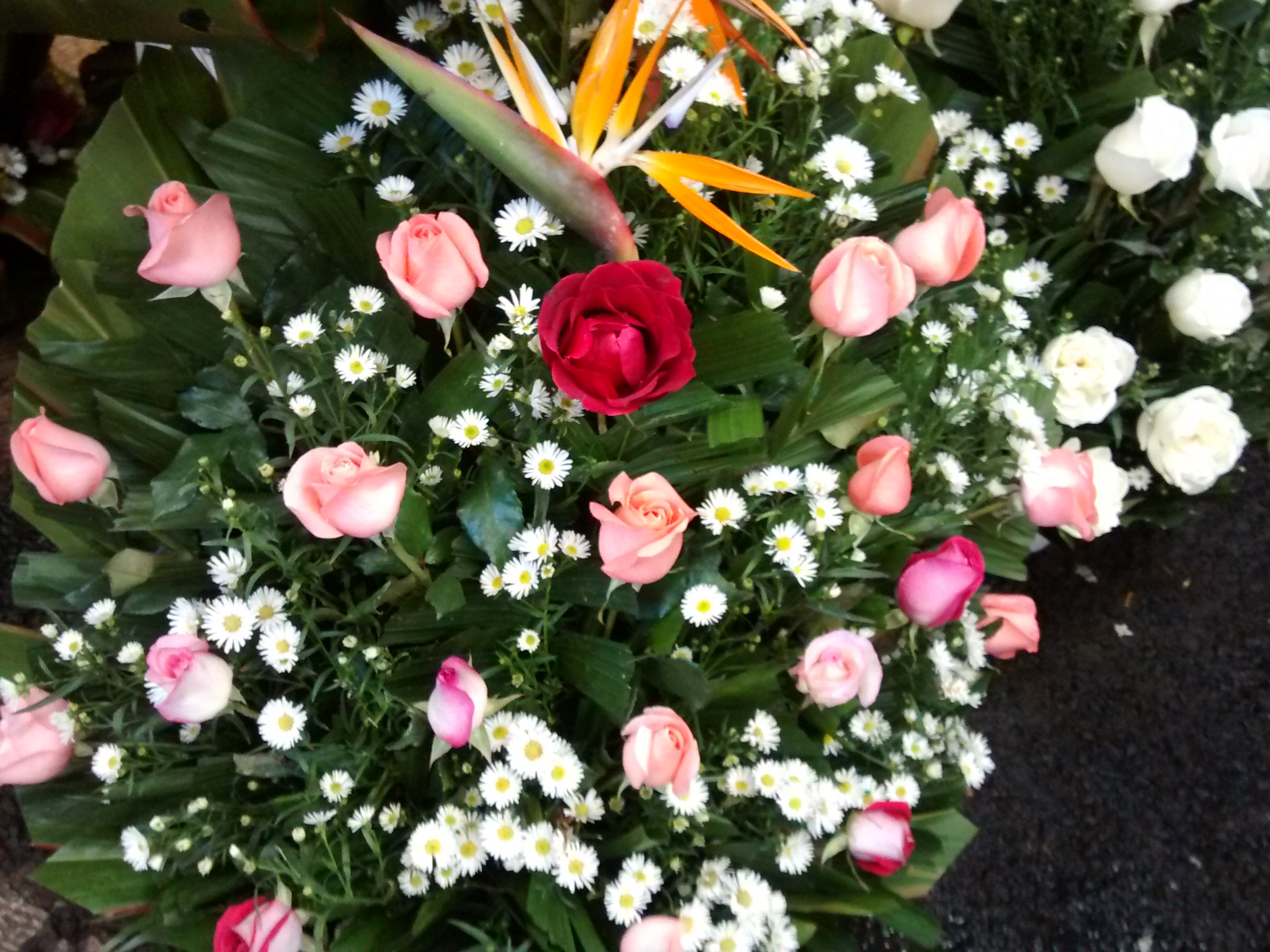 Arreglo Floral De Rosas Rosas Y Rojas